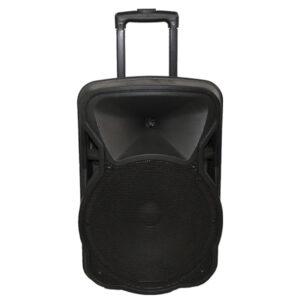 Parlante Dblue Karaoke 12 Pulg 100 W Bt Dbsb058